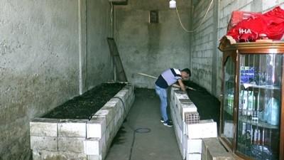 gubre -  İnternette görüp başladı...1 milyon solucanla aylık 1 ton gübre üretiyor