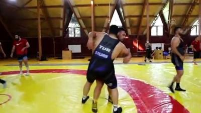 BOLU - Milli güreşçiler olimpiyatlarda madalyaya ulaşmak için Bolu'da enerji depoladı
