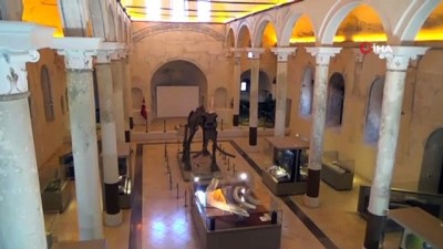 restorasyon -  2 milyon yıllık Güney Fili fosilleri Doğa Tarih Müzesi'nde sergileniyor