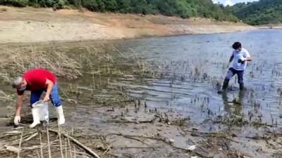sudan - İSTANBUL - Alibeyköy Barajı'nda kıyıya vuran balıklardan ve sudan numune alındı