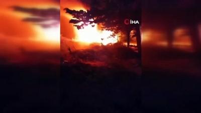 elektrik diregi -  Hatay'da bahçe yangını korkuttu