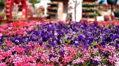 heykel - KONYA - Kelebekler Vadisi'nin yeni bahçesi renklerin şölenine davet ediyor