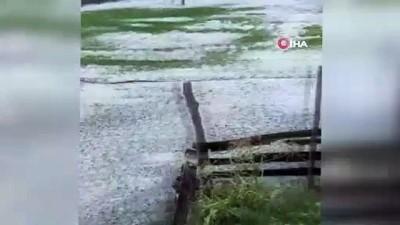 dolu yagisi -  Van'da dolu yağışı bir mahalleyi beyaza bürüdü