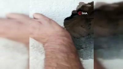 keci -  Trafo ile duvar arasında sıkışan keçi kurtarıldı