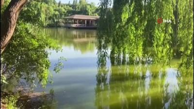 evlilik teklifi -  Afyonkarahisar'ın küçük saklı cenneti 'İnli Balıklı Gölü' böyle görüntülendi