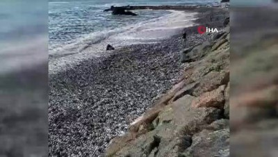 salda -  55 yaşındaki adamın boğulma anı kamerada