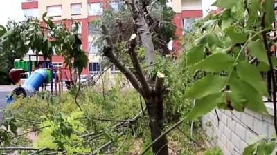 cocuk parki - KONYA - Bir sitenin bahçesindeki ağaçların kesilmesi tepki çekti