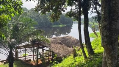 kano - YAOUNDE - Kamerun'da Nyong nehri eşsiz manzarasıyla büyülüyor Videosu