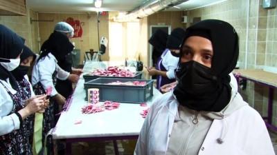 kiz kardes - SAKARYA - Kadın girişimci 'çocukları gülümseten şekerleri' 5 ülkeye ihraç ediyor