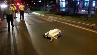 savci -  Motosikletin çarptığı Rus turist olay yerinde yaşamını yitirdi