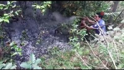 yangin panigi -  Sarıyer'deki yangına polis müdahalesi