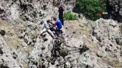 kacis -  Yaban hayvanların saldırısından kaçan keçileri AFAD ve jandarma ekipleri kurtardı