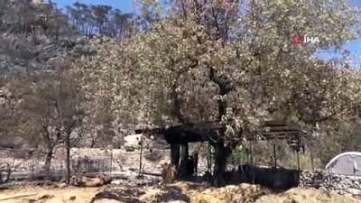yikim calismalari -  Orman yangınından etkilenen köylerde yaralar sarılmaya başlandı