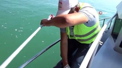 nitelik -  Mersin'de denizi kirleten gemiye 1 milyon 490 bin TL ceza kesildi
