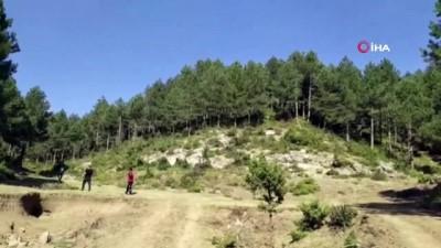 a haber -  Kayıp Emine öğretmen ormanda ölü bulundu
