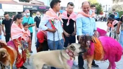 hatira fotografi -  'Sudan Koyun Geçirme ve Çoban Bayramı' etkinliği renkli görüntüler oluştu