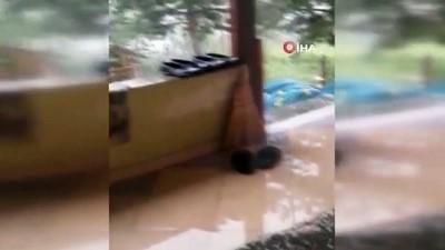 yagmur -  Artvin'de hortum evlerin ve ahırların çatısını uçurdu