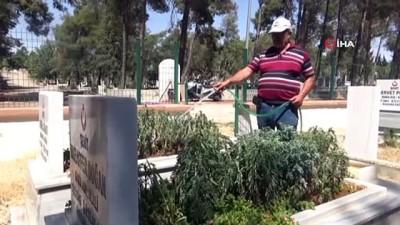 a haber -  Şehit mezarlarının gönüllü bekçisi