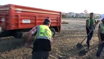 sel -  Sinop'taki sel felaketinde denize sürüklenen tomruklar Samsun sahillerinde...200 kilometre sürüklendiler Videosu