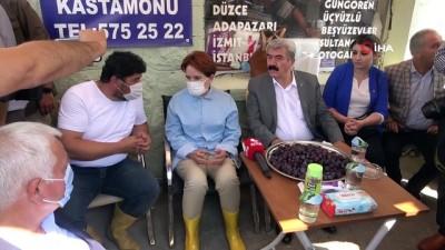 muhalefet -  Meral Akşener, afet bölgesini ziyaret etti