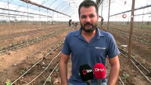 kimya -  Antalya'da sezonun ilk domates fidanları toprakla buluştu