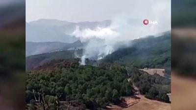 yangin -  2 helikopter ve 1 uçağın müdahale ettiği Tunceli'deki orman yangınının yüzde 95'i söndürüldü