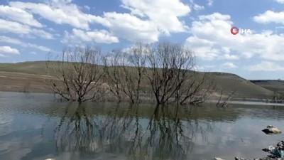 kuraklik -  Baraj suyu çekildi, ağaçlar ortaya çıktı Videosu