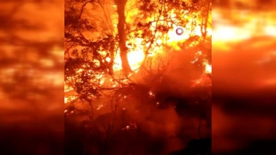 orman yanginlari -  Bingöl'de bir bölgedeki yangın söndürüldü, diğer yangına müdahale sürüyor