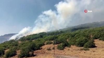 yangin -  Bingöl'deki orman yangını devam ediyor