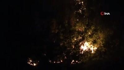 Muş'ta örtü yangını