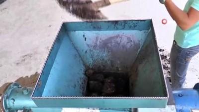 gubre -  Bu kömür yandıktan sonra ne kül ne de toz bırakıyor