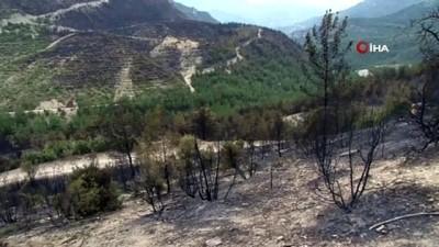 Karabük'teki orman yangınının izleri gün ağarınca böyle görüntülendi