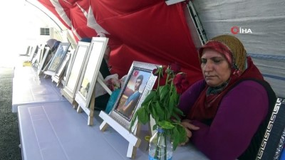 oturma eylemi -  Oğlu zorla dağa kaçırılan evlat nöbetindeki anneden, PKK'ya sert tepki