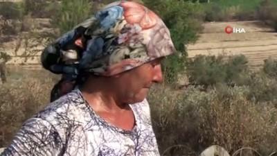 a haber -  Yangınla boğuşan kardeşine yardıma gitti, döndüğünde evi ve koyunları yanmış halde buldu